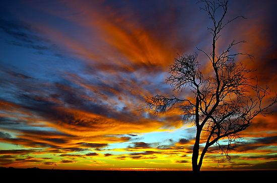 Australian-sunrise
